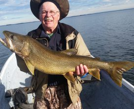 "35"" Lake Trout caught during a visit to the Molson Lake Lodge!"