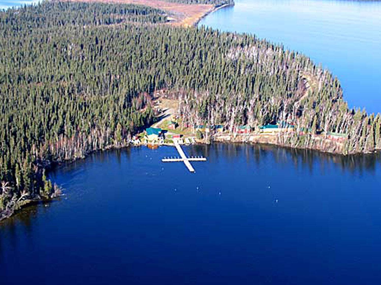 Molson Lake Aerial View